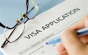 Indian e-Visa Application form